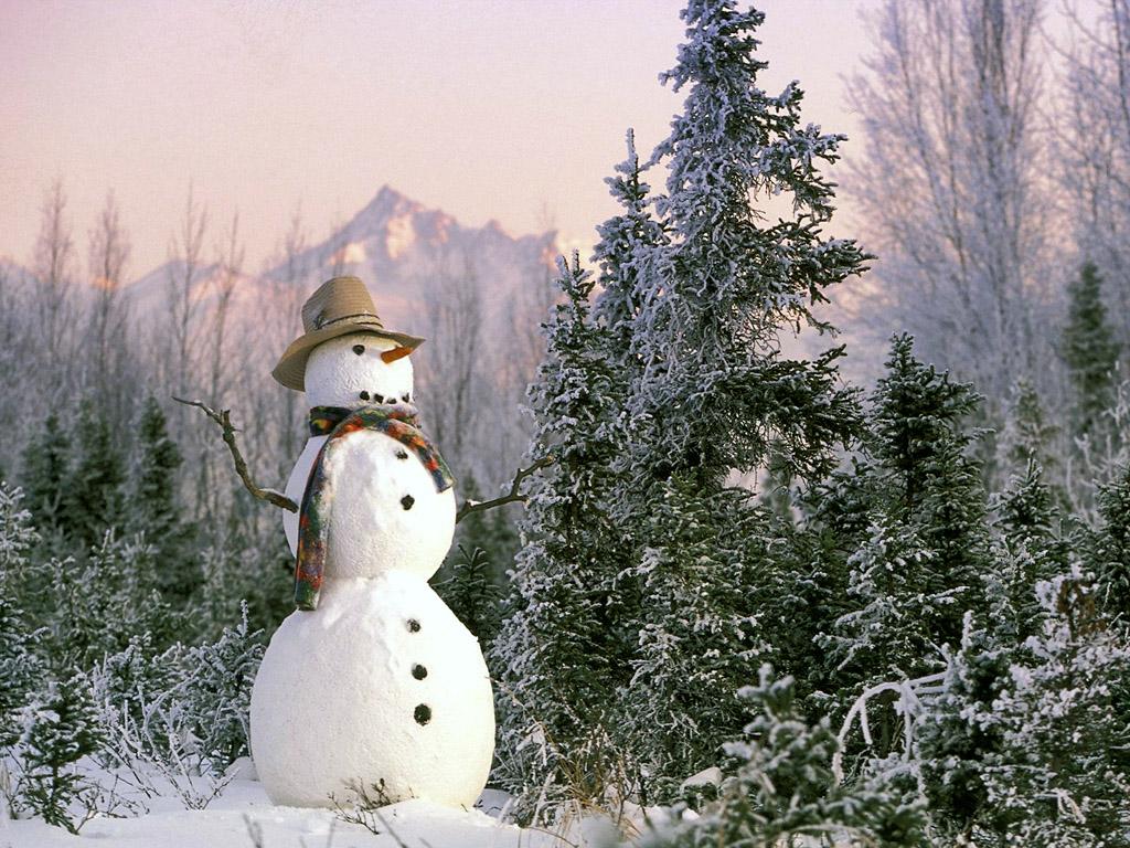 【アナと雪の女王】稲葉菜月の『雪だるま作ろう』が可愛すぎるから調べてみた