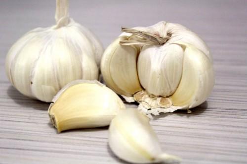 garlic-1355275160pmp