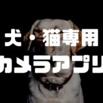 犬・猫専用カメラアプリ