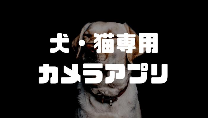 犬や猫をカメラ目線で撮影できるiPhoneアプリ「Camera Dog」