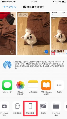iPhoneの壁紙にLive Photoを設定する方法