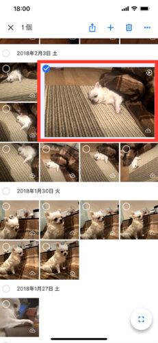 iPhoneで削除した写真を復元する方法